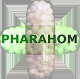 Pharahom